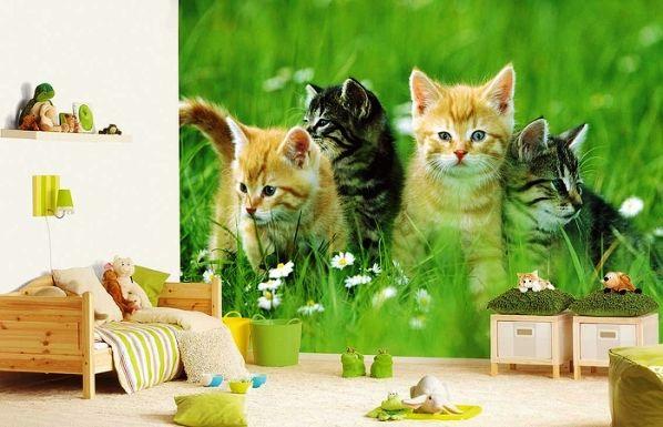 Фотообои с котятами самым лучшим образом впишутся в интерьер