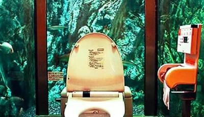Фотообои в туалете море