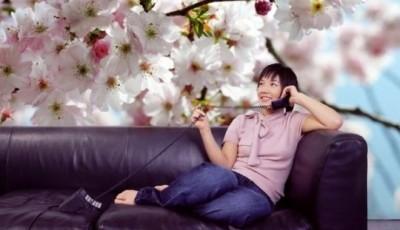 фотообо с цветами гостиную