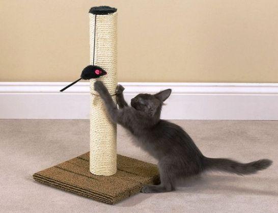 Как сделать царапки для кошки