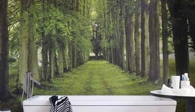 Фотообои для ванной комнаты деревья