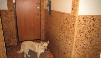 применение пробковых обоев в коридоре