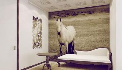 Фотообои лошади на стену монохромные