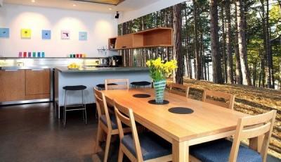 фотообои для кухни деревья