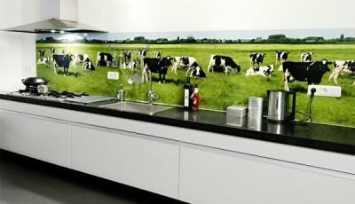 фотообои для кухни коровы