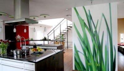фотообои для кухни зеленые