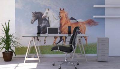 фотообои лошади кабинет