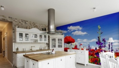 фотообои на кухню маки