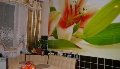 фотообои на кухню цветок