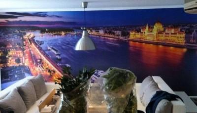 Фотообои город Будапешт
