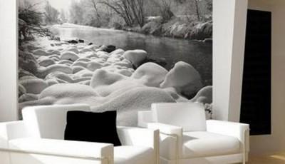 черно белые фотообои природа