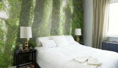 фотообои экзотический лес