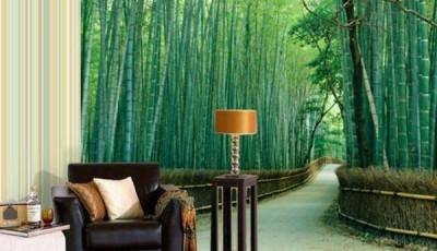 фотообои красивый бамбук
