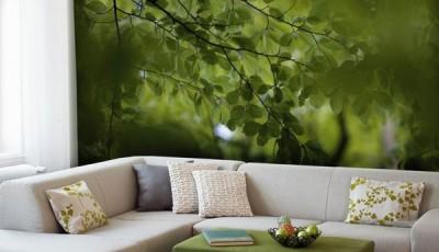 фотообои лес листья