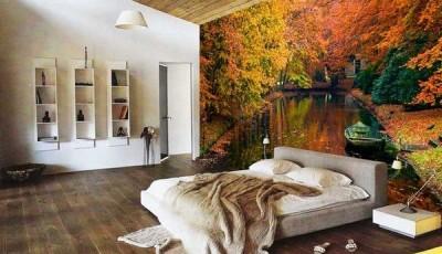 фотообои лес осенью