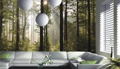 фотообои лес с лучами солнца