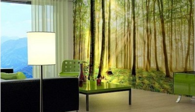 фотообои лес в зале деревья