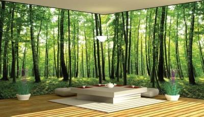 фотообои панорманые лес