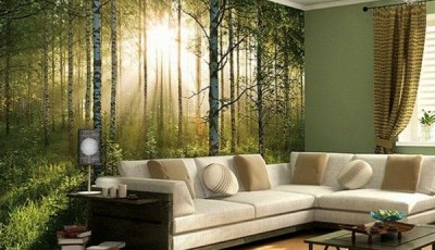 фотообои природа березовый лес