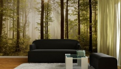 фотообои с лесом и черный диван