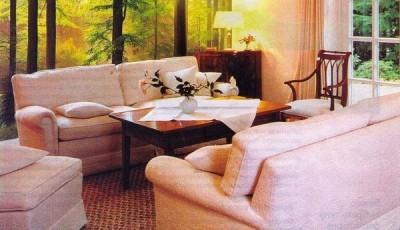 фотообои с лесом рядом с диванами