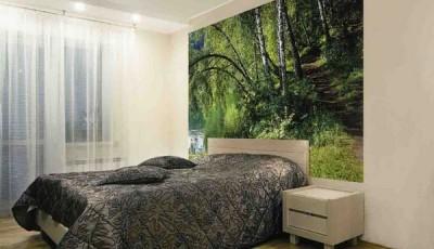 фотообои с лесом в спальне березы