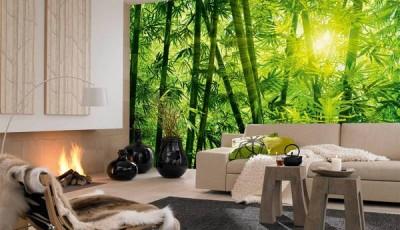 фотообои с природой на стену зеленый лес