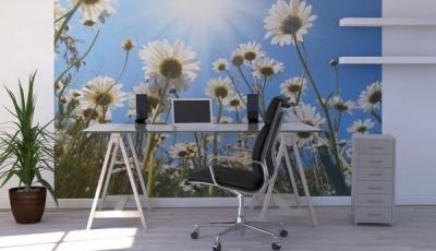 фотообои с ромашками в кабинете