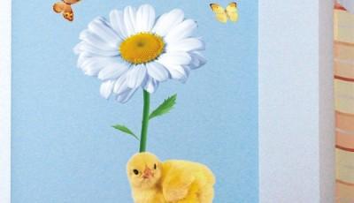 фотообои с ромашкой для детской