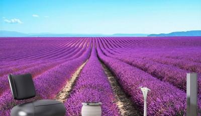 фотообои цветы лаванды в интерьере