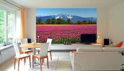 фотообои тюльпаны красные
