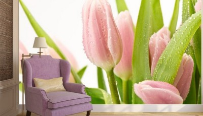 фотообои тюльпаны на стене