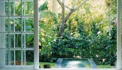 Фотообои вид из окна тропический лес