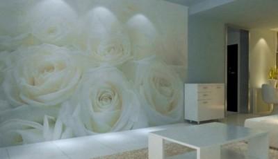 фотообои роза