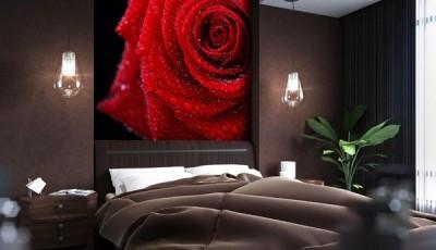 фотообои роза бордовая