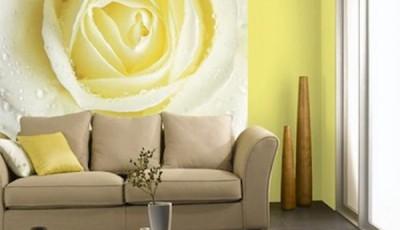 фотообои роза желтая