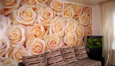 фотообои розы розовые