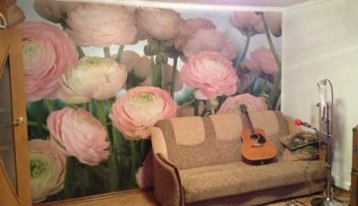 фотообои розы розовые на стене