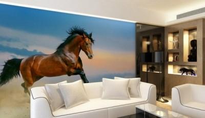 Фотообои с лошадью