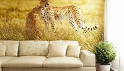 Фотообои с животными для стен гепард
