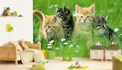 Фотообои с животными для стен котята для детей