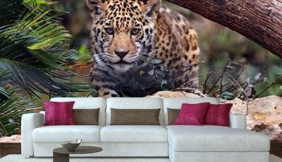 Фотообои с животными для стен леопард в гостиной